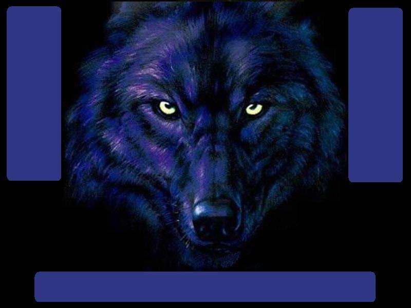 Blue Wolf Myspace div layout
