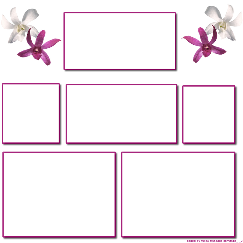 Pink Flowers Myspace div layout