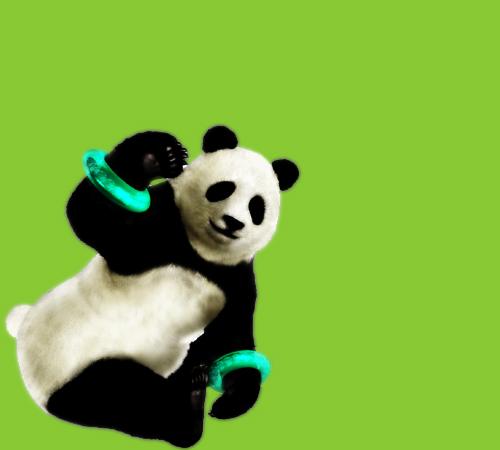 Panda Myspace div layout